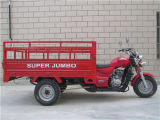300cc Gasoline 3 Wheel Cargo Motorcycle for Sale