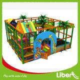 Children Indoor Playground Equipments for Sale