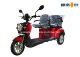 Double Seats Electric Mobility Scooter 3-Wheel E-Scooter Double Seats