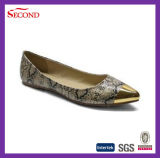 Latest Style Sharp Women Shoes