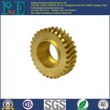 Customized Brass CNC Machining Hobbing Worm