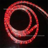 Popular Christmas Light Round Vertical 2 Wire LED Rope Light with CE