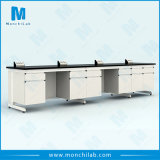 Phenolic Resin Tops Chemistry Lab Wall Mounted Bench