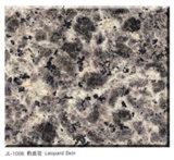 Léopard Skin Granite Slab et Tiile Granite