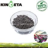 Fertilizzante granulare dell'agente microbico di bambù del carbone di legna di Kingeta