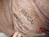 3/4inch、2inch Anti Bird Netting (W-ABN25)