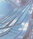 High-force Metal Structure Escalators