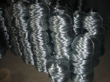 0.5-1mm Galvanized Staple Wire (XM-G5)