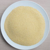 Новым зерно чеснока урожая обезвоженное высоким качеством