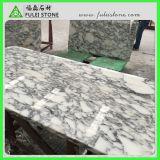 Dessus de marbre blanc de vanité de partie supérieure du comptoir d'Arabescato