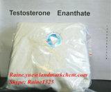99%純度のステロイドの粉のテストステロンEnanthate (Halloweenの間の自由な出荷)