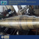 OEM Stainless Steel Turning Milling Parts Usinagem CNC