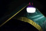 Caminhando lanterna de acampamento telescópica do diodo emissor de luz da caminhada/cavamento SMD2835 3W da luz da barraca