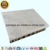 A pedra de mármore do branco 5mm de Asti suportou com os painéis de alumínio do favo de mel