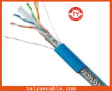 Cat blu 6 Network Cable con Bc
