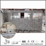DIY poco costoso G439 Bianco Taupe White Granite Countertops per Kitchen/Bathroom