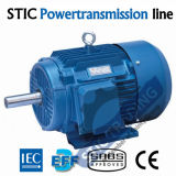 IEC Cast Iron 4p High Efficiency Electric Motor