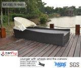 가장 새로운 형식 디자인 옥외 수영장 가구 2륜 경마차 로비
