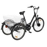 3wheels Electric Bike voor Adult