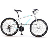7 Gearの熱いSale Mountain Electric Bike