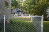 Geschweißtes Maschendraht-Zaun-Panel, Kurbelgehäuse-Belüftung beschichtete geschweißtes Zaun-Panel, Puder beschichtetes Zaun-Panel, bearbeitetes Eisen-Zaun-Panels