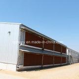 Construção pré-fabricada da casa da exploração avícola de Qingdao Hapy