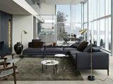 Cuoio genuino europeo L sofà sezionale di Moden di figura per la casa (GLS-007)