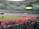 P16 LEIDENE van uitstekende kwaliteit van het Stadion Vertoning met Hoge Helderheid