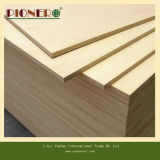 18mm Furniture Grade Paulownia Plywood pour le Japon Market