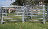El equipo de dirección del ganado, rampa de cargamento, pesa el embalaje, los paneles y el libro de las puertas