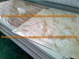 Chaîne de production de marbre artificielle de feuille de PVC