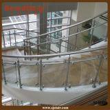 Barandilla de cristal decorativa de interior del pasamano de la escalera del acero inoxidable de la escalera (SJ-S1050)