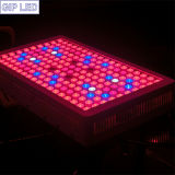 30 60 90 diodo emissor de luz Grow Lights de 120degree Lense 900W Powerful