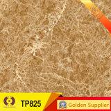 十分に艶をかけられた磨かれたタイル(60P120B)