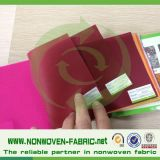 Eco-Friendly Multi-Uses Spunbond Polypropylene Non Woven Fabric