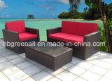 Mobília de vime do pátio do Rattan do sofá do jardim (GN-9078-4S)