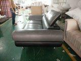 홈 (GLS-016)를 위해 놓이는 가장 새로운 2개의 시트 가죽 Recliner 소파