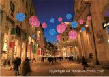 LEDの通りの装飾的で軽いクリスマスの休日の装飾