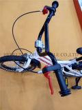Tianqiu nagelneues Art-Fahrrad, Schleife, BMX Kind-Fahrrad