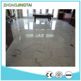 Interior Flooringのための灰色のWhite Quartz Slab