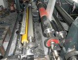 Máquina de impressão de Flexo das cores da alta velocidade 6 (YTB-61200)