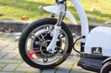 3 Autoped van de Zetel van het Kind van de Motor van de Autoped van het wiel de Elektrische 500W Brushless