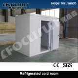 Chambre froide de haute performance de marque de Focusun