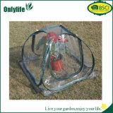Estufa Foldable impermeável do PVC de Usued do jardim mini