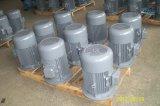 세륨 승인되는 비동시성 유동 전동기 (Y Y2 YE2 YS MS 삼상 모터)