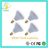 Pista di Stoele Br30 8W LED che illumina le lampadine incandescenti dell'inondazione