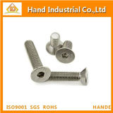 Tornillo principal de Csk del socket Hex del acero inoxidable M6 DIN7991
