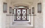 家のための鉄との現代前部出入口そしてWindows