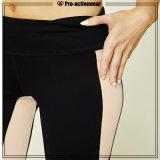Pantaloni grigi di yoga di ginnastica di Sportwear delle nuove di arrivo donne del commercio all'ingrosso