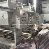 Prensa del rotograbado de Shaftless de 8 colores para el PVC, BOPP, el animal doméstico, el etc